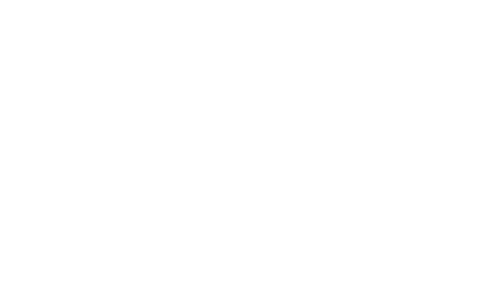 wordpress-logo-simplified-white-plus v2